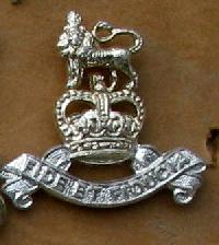 Collectable British Army Collar Badge 10629