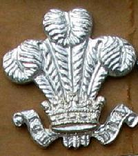 Collectable British Army Collar Badge10634