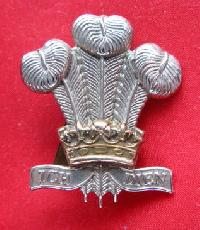 £9.00 - Collectable  British  Military Cap Badge 10692