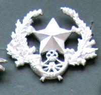 £7.00 - Collectable  British  Military Cap Badge 10737