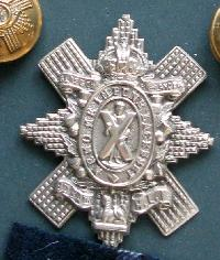 Collectable  British  Military Cap Badge 10753