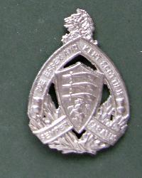Collectable  British  Military Cap Badge 10785