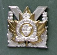 £20.00 - Collectable     Military Cap Badge 10787