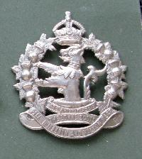 Collectable    Military Cap Badge10788