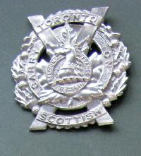 Collectable   Military Cap Badge 10790