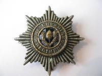 Collectable  British  Military Cap Badge10815
