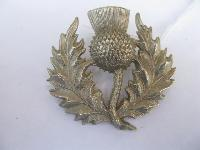 Collectable  Glengarry Cap Badge10840