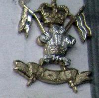 £7.00 - Collectable  British  Military Cap Badge 10899