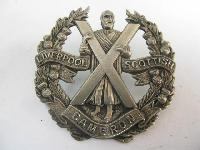Collectable  British  Military Cap Badge11530