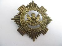 Collectable  British  Military Cap Badge 11541