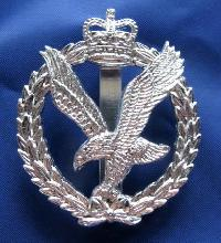 Collectable British  Military Cap Badge AAC 8984
