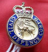 Collectable British  Military  Badge 9134
