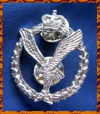 £7.00 - Collectable British  Military   Badge 9037
